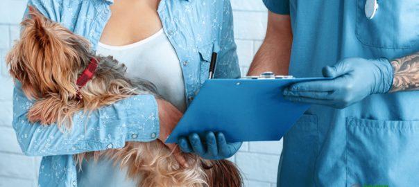 animal cruelty laws california